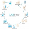 LABbase® das flexible LIMS