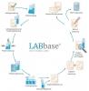 LABbase® das flexible LIMS