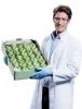 UniSolv®-Lösungsmittel für die Bestimmung von Dioxin durch GC-MS